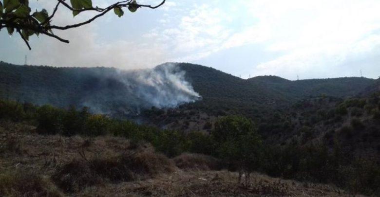 آتش سوزی در هفتاد هکتار زمین در مرز گرجستان و ارمنستان