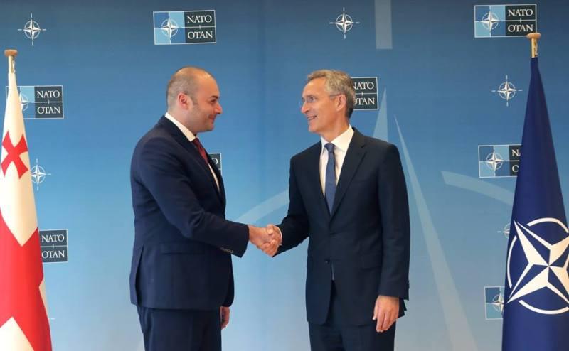 عضویت گرجستان در ناتو توسط ۲۹ کشور تایید شد