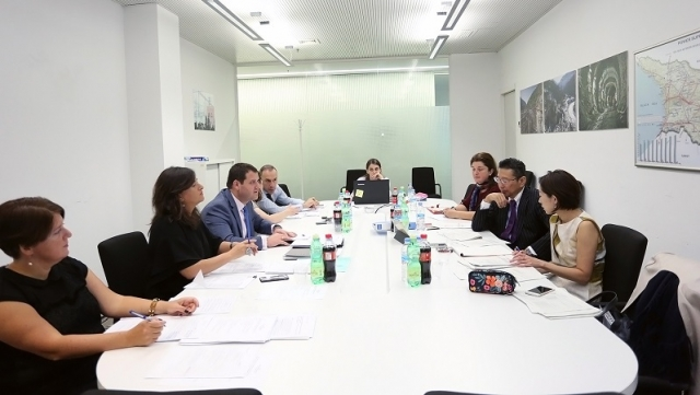 مذاکرات گرجستان و ژاپن به منظور گسترش سرمایه گذاری بین طرفین از سر گرفته خواهد شد