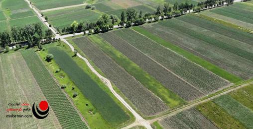 زمین کشاورزی در گرجستان