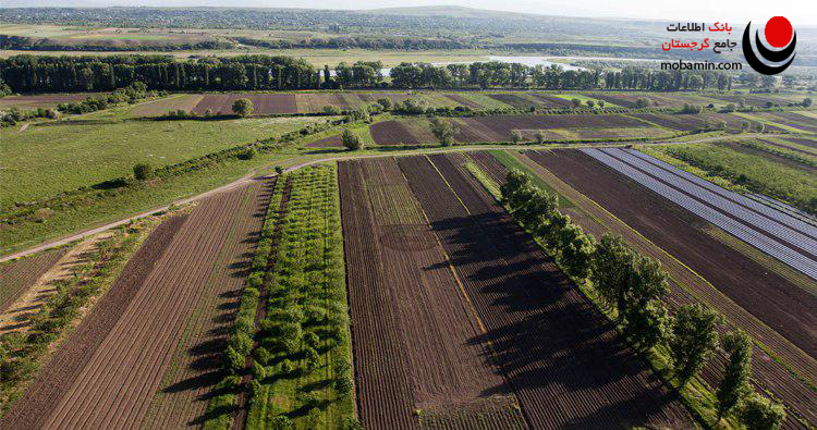 طرح های زیست محیطی و کشاورزی در گرجستان