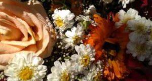 هدیه دادن گل به گرجی ها